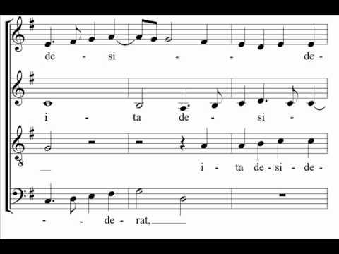 Sicut Cervus, Palestrina [spartito+voci]