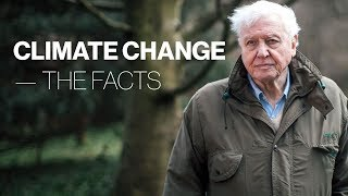 We need to take action - Now: Sir David Attenborough documentary