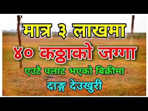 मात्र ३ लाख कठ्ठामा ४० कठ्ठा बिक्रीमा || Sasto Ghar Jagaa Nepal || Real estate nepal|| Dang Deukhuri