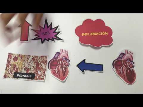 Terapia de la hipertensión arterial para conferencias