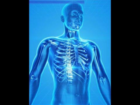 Cardio-DiaDENS Vorrichtung für ein Blutdruck-Korrektur DiaDENS cardio