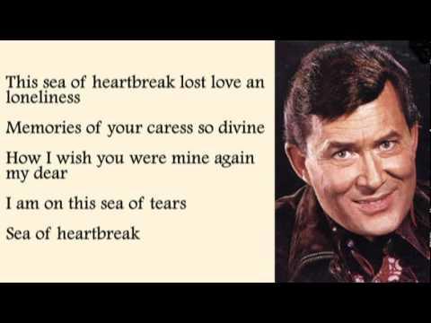 If My Heart Had Windows cover