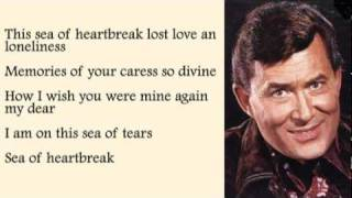 Don Gibson - Sea Of Heartbreak with Lyrics