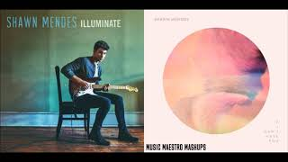 If I Can't Have YouThere's Nothin Holdin' Me Back [Mashup]   Shawn Mendes