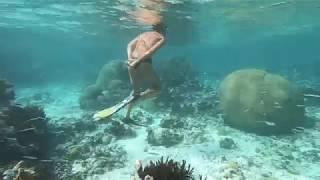 Los Roques en vidéo (1)