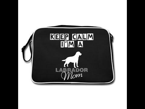 TAG: cosa c'è nella borsa per il mio cane (what's in my DOG'S bag!)