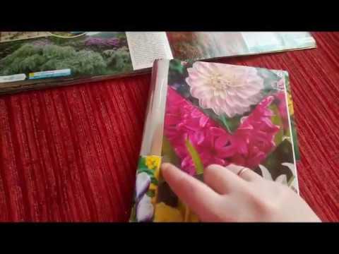 мой Садовый Дневник