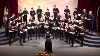 Naša pesem 2014 | Pēteris Vasks (1946)