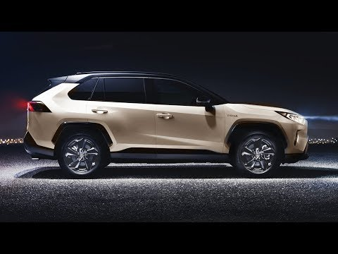 2019 Toyota RAV4 - Perfect SUV!
