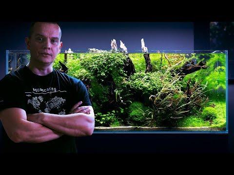Húgycső tampon növények számára férfiaknál