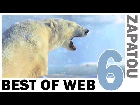 Best of Web 6 - HD