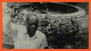 """ბაშირ """"თბილისოვიჩი"""" - გზა აფრიკიდან სტალინისუბნის დეპუტატობამდე"""