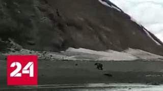 """Беги, Серега!"": очевидец снял на видео фатальную встречу рыбака с медведем - Россия 24"
