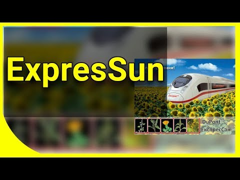 ExpresSun технология
