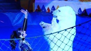 Trained Bears Amaze in Sochi