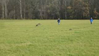 preview picture of video 'Jahresrückblick 2008 SV OG Achern'