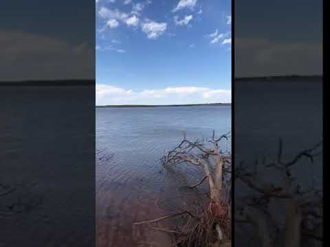 Video Of Central State Park, OK