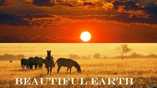 Beautiful Earth - The Breathtaking Beauty Of Nature || HD