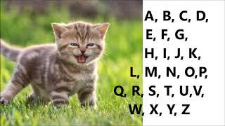 Alfabet po angielsku - Angielski Alfabet ABC piosenka
