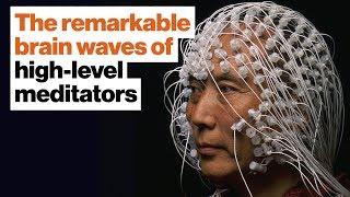 Superhumans: The remarkable brain waves of high-level meditators   Daniel Goleman