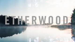 Etherwood - Everything You Are