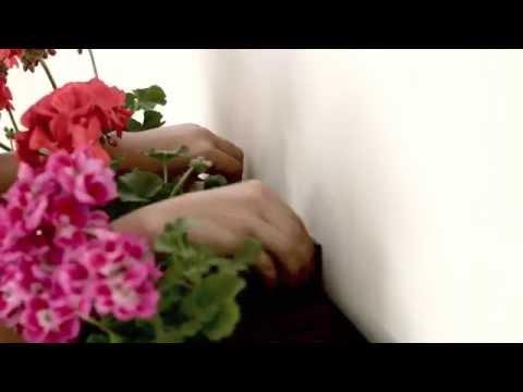 Soporte pared Jardín Vertical blanco Minigarden