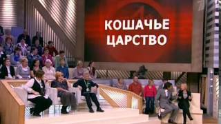 "Пусть говорят. ""Кошачье царство"" (04.04.2012) программа"