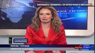 ΝΙΚΟΣ ΓΑΤΣΑΣ_ΣΕ ΛΕΥΚΟ ΚΛΟΙΟ Η ΘΕΣΣΑΛΙΑ 16 01 2021