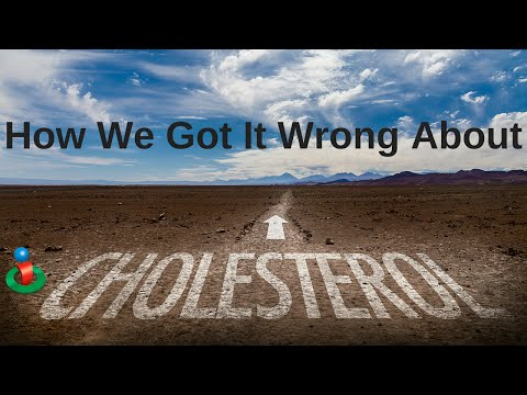 How Doctors Got it Wrong About Cholesterol