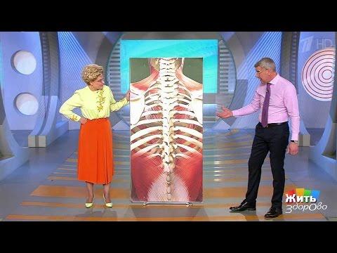 Лечит ли суставы пищевой желатин