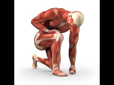 Como el Nise ayuda con el dolor en la espalda