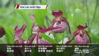 Đài PTS – bản tin tiếng Việt ngày 21 tháng 6 năm 2021