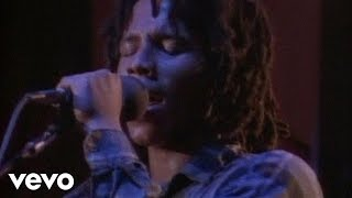 Ziggy Marley And The Melody Makers - Tumblin' Down
