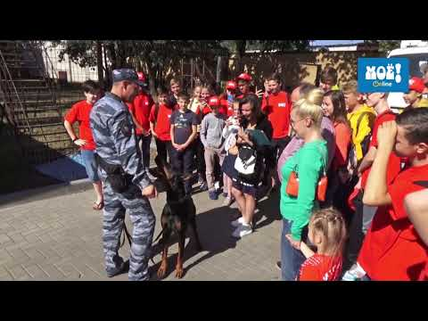 Юные газетчики за лето собрали на помощь тяжело больным детям 56 700 рублей