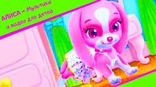 Мультик про маленькую собачку / Мультики про собачек / АЛИСА - Мультики и видео для детей