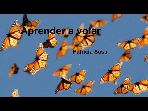 Aprender a volar-  Patricia Sosa