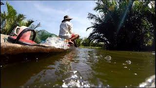 Bắt Cá Sông Một Ngày Bội Thu | Hoang Tien Giang 25