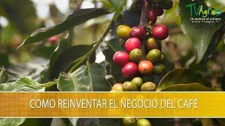 Como Reiventar el Negocio del Cafe - TvAgro por Juan Gonzalo Angel Restrepo
