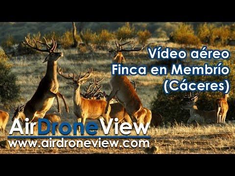 Vídeo aéreo finca en Membrío, Cáceres