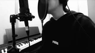 Albert Posis - Serendipity (윤식당 OST)  [cover]