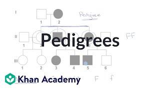 Pedigrees | Classical Genetics | High School Biology | Khan Academy