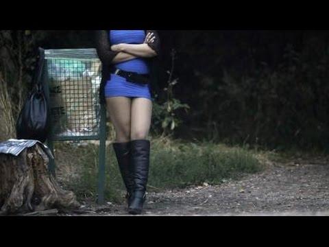 Il sesso degli animali e le femmine