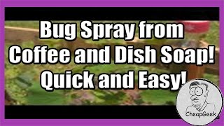 Bug Spray from Coffee and Dish Soap! Quick and Easy!