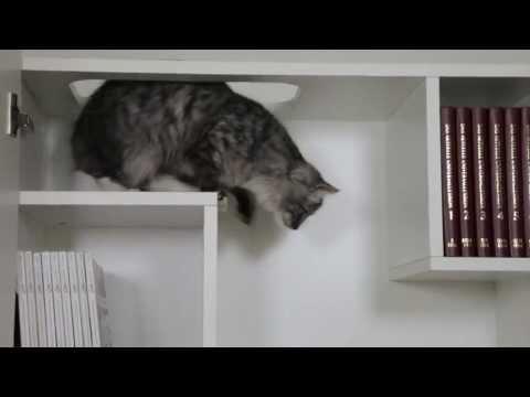 FURniture smart living - die neue Generation von Katzenmöbeln