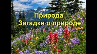 Природа. Загадки о природе детям. Nature in Russian language. Riddles about nature in Russian