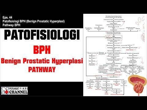 Eglonil és prosztatitis