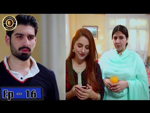 Zindaan Episode - 16 - 16th May 2017-  Top Pakistani Drama