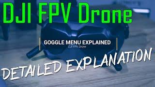 DJI FPV Drone Goggle Menu Walkthrough Settings Explained Setup your FPV Quad Correctly ????