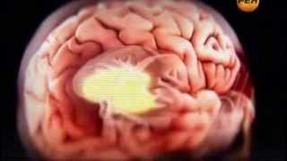 Скрытые резервы мозга