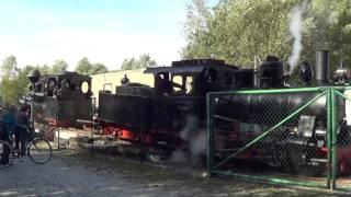 preview picture of video 'Waldeisenbahn Muskau, Ankunft 99 3315 in Weißwasser'